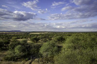 Rancho de Los Charcos