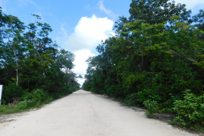 RESIDENTIAL OR MULTIFAMILY LOT 9 IN REGION 10, THE NEW DEVELOPMENT ZONE IN TULUM